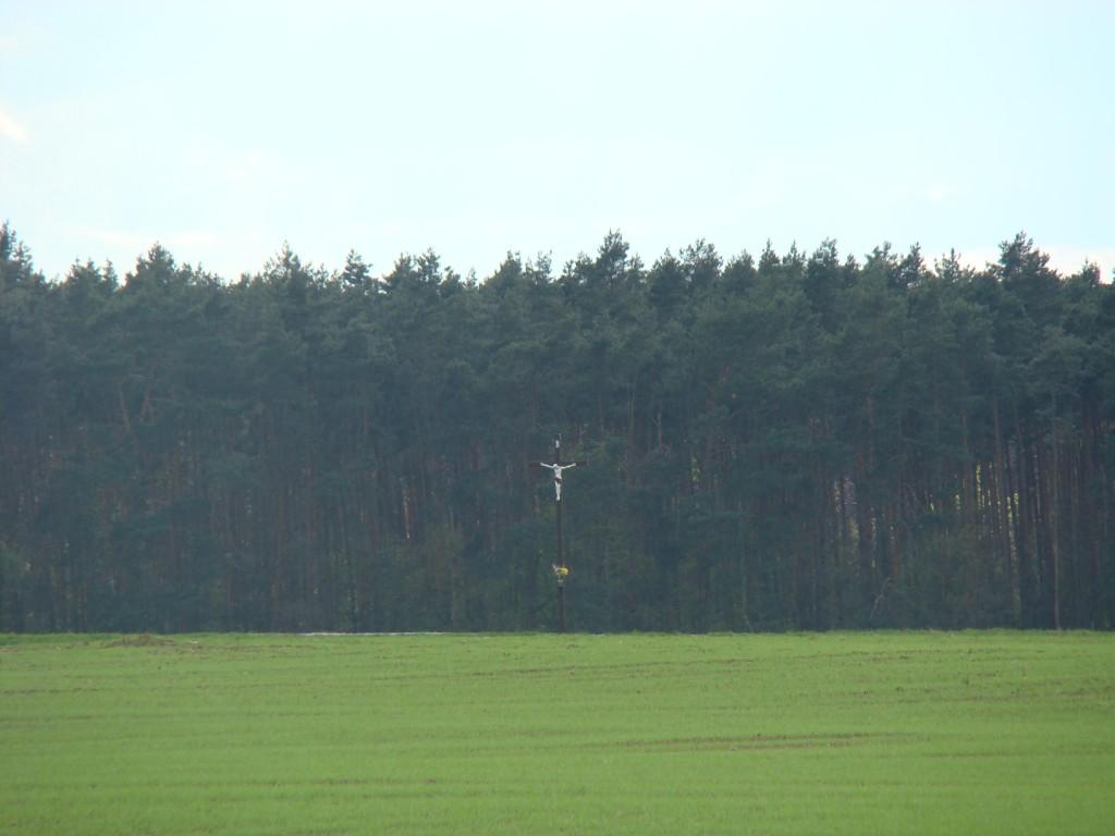 krzyż pośrodku pola