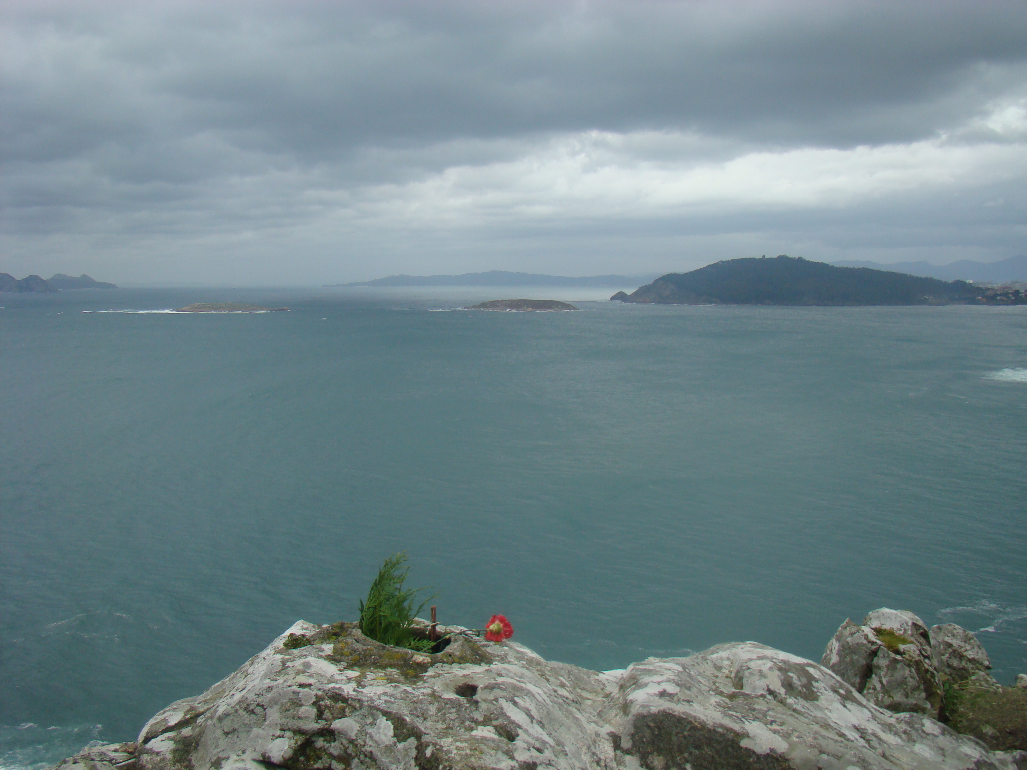 vigo - morze