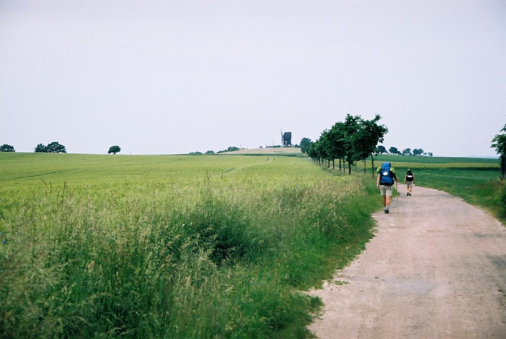 Via Regia na zachód od Zgorzelca